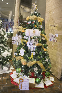 Tree of Gold 2015